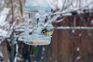 készíts madáretetőt kertedbe
