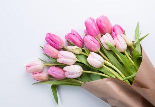 tulipán koszorú