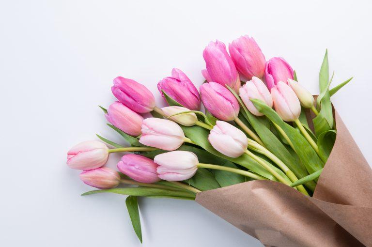 Tulipán koszorú 3 lépésben – Csináld magad!