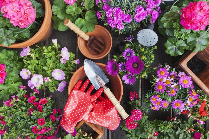 tavaszi ablakdekorációk