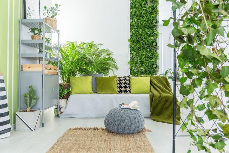 Függőleges kertek – Kis lakásokra szabott zöld megoldások
