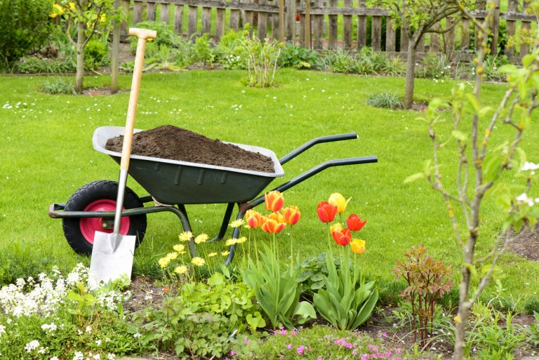 Szódabikarbóna a kertben – 7 praktika, amiről talán még nem is hallottál