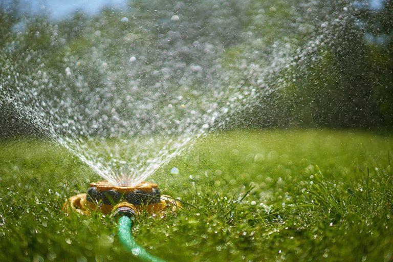 Kerti esőztető – Gazdaságos fogyasztás és meseszép kert