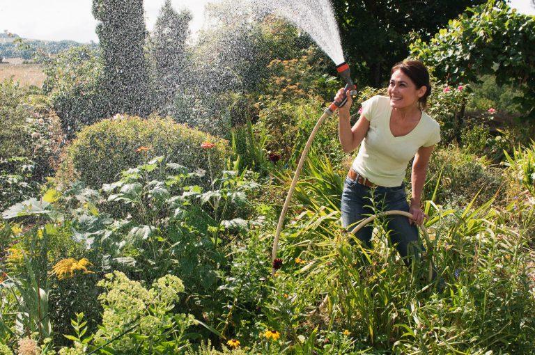 Mikor locsoljunk? Növényeid hálásak lesznek, ha betartod ezt a pár alapszabályt