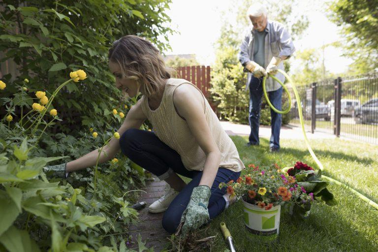 Szép kertek, inspiráló ötletek