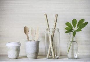 fenntartható otthon