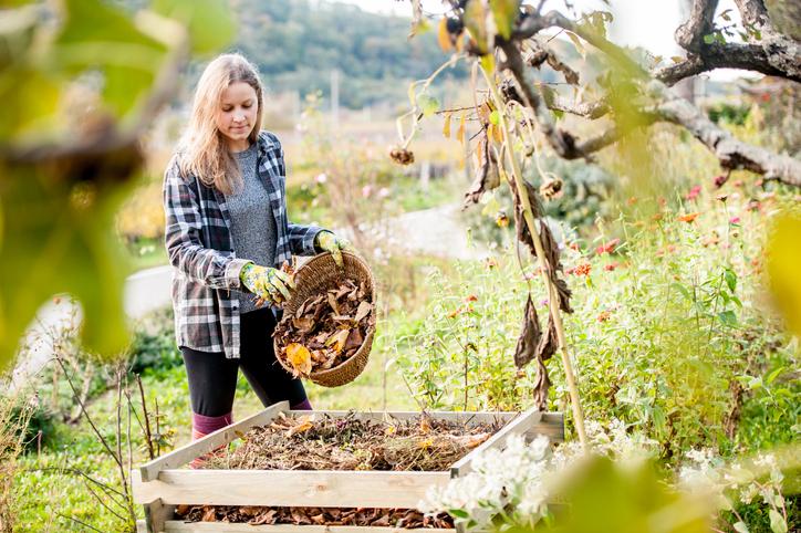 Őszi kertrendezésre fel! Ezek a legfontosabb teendők