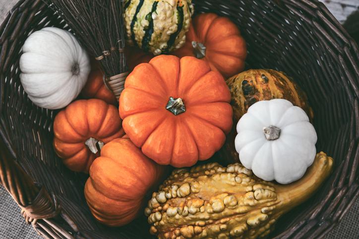 Trendi őszi tökös dekorációk – 5 szuper ötlet otthonodba