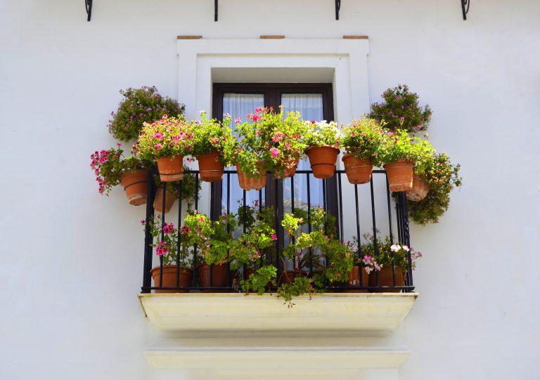 Álmodjon mesebeli teraszt vagy erkélyt ezekkel a dézsába is ültethető növényekkel!