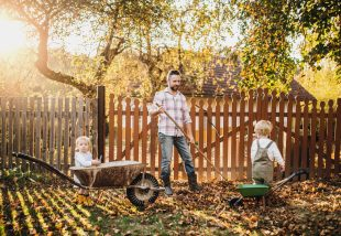 Így oldható meg az önellátás – Ekkora kertre van szüksége egy családnak