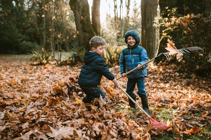 6 tuti tipp, mihez kezdj a lehullott falevelekkel az udvarban