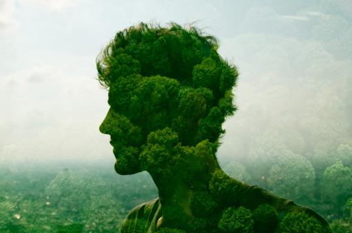 3+1 tipp a környezettudatosabb lakóközösségért