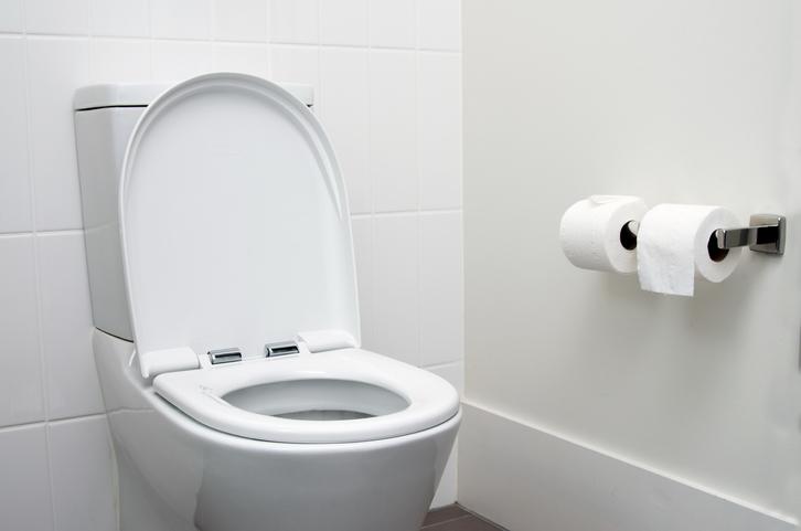 Csak erős idegzetűeknek: a leghorrorisztikusabb WC-k, amiket valaha láttál