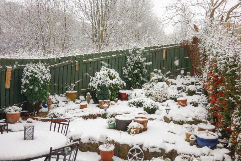 Mit csinál egy kertész télen?