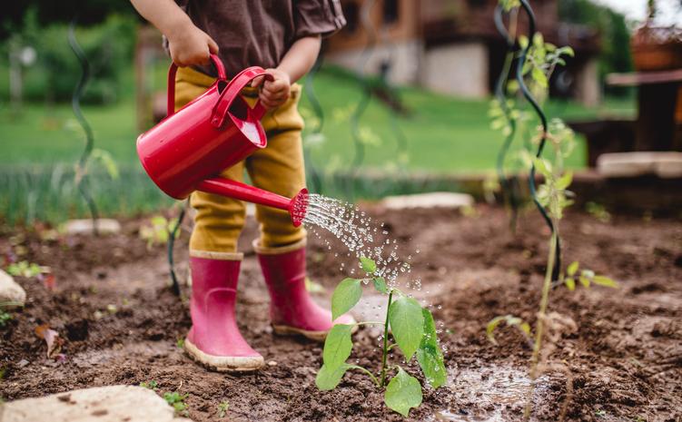 Kertépítési ötletek házilag – Így varázsolj magadnak tökéletes zöld oázist