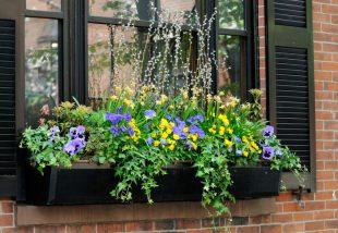 Tavaszi virágládák az ablakodba – Íme, egy kis inspiráció!