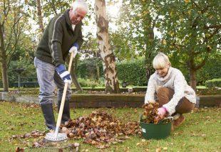 4 tipp, hogyan készítsd fel a kerted a tavaszra