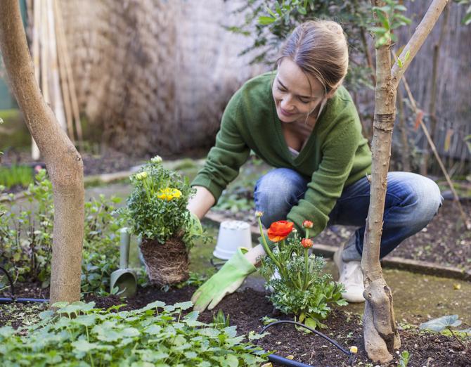 Tavaszi kertrendezés – 4 munkálat, ami elengedhetetlen, ha álomkertre vágysz