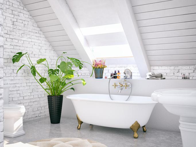 A fürdőbe velük! 10 növény, ami kifejezetten imádja a magas páratartalmat
