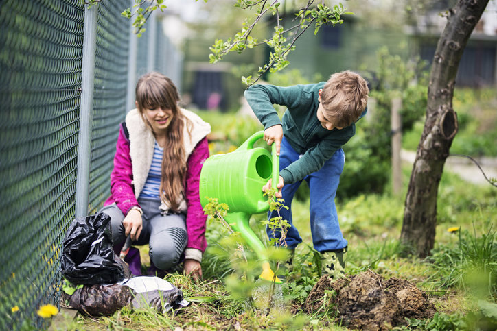 6 hasznos kerti tipp – Így készítsd fel a gyepet tavaszra