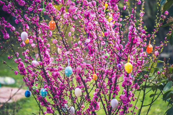 Húsvéti kertdekor – A legjobb ötletek, hogy a Te kerted legyen a legdíszesebb