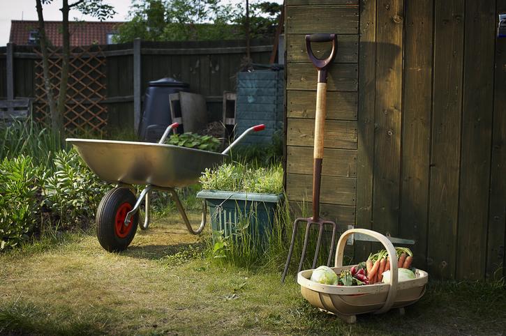 5 szerszám, amire mindenképp szükséged van, ha rendezett kertet szeretnél