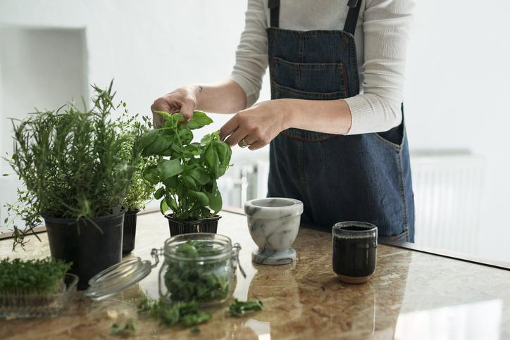 Így maradnak sokáig életben a cserepes fűszernövények