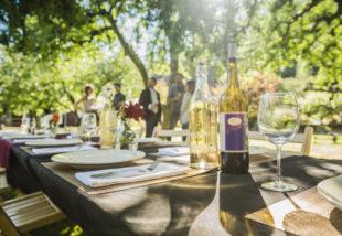 2020 nyarának legtrendibb kerti parti kiegészítői – Le ne maradj róluk!
