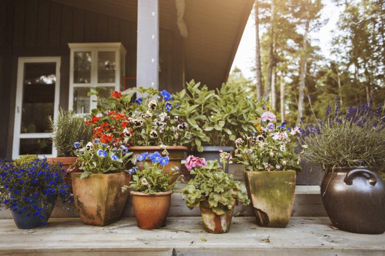 Kerti virágtartó ötletek – 8 egyedi darab, mely különlegessé varázsolja kertedet