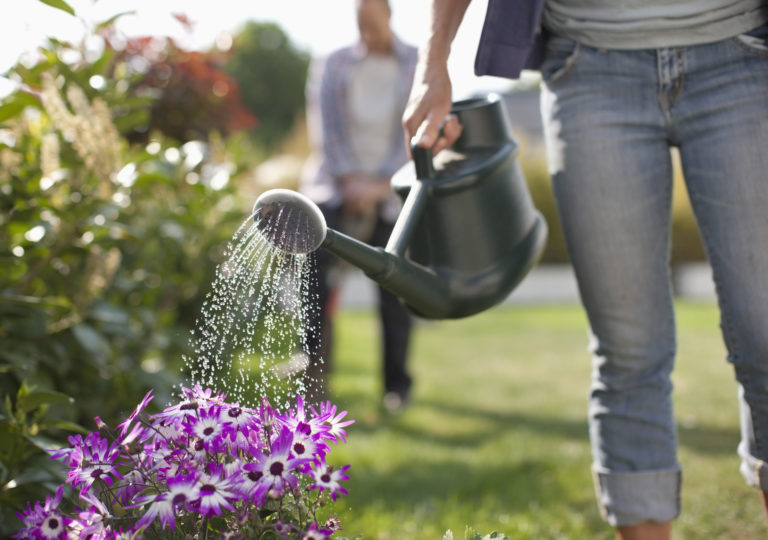 Az 5 leggyakoribb kertészkedési hiba