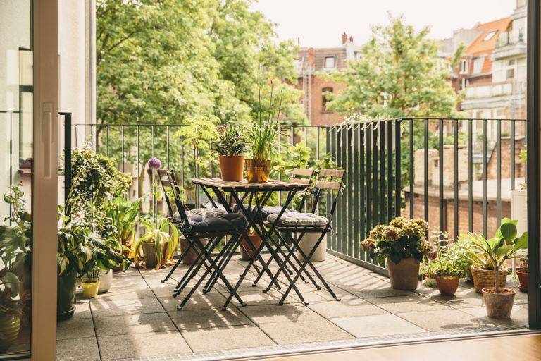 Zöld oázis az erkélyen – 3 tipp, hogy sokáig szépek maradjanak a növényeid