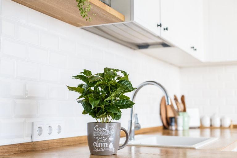 Kávéőrült vagy? Használd rajongásod a lakás díszítéséhez