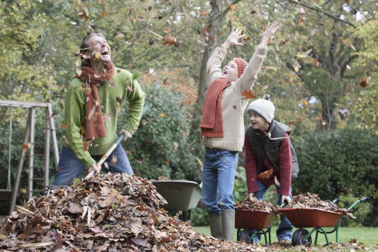 Gyepgondozás ősszel – Ezt az 5 teendőt mindenféleképp ütemezd be