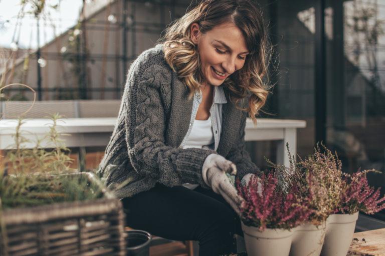 4 télálló kaspós növény, amit nem kell bevinnünk a melegbe