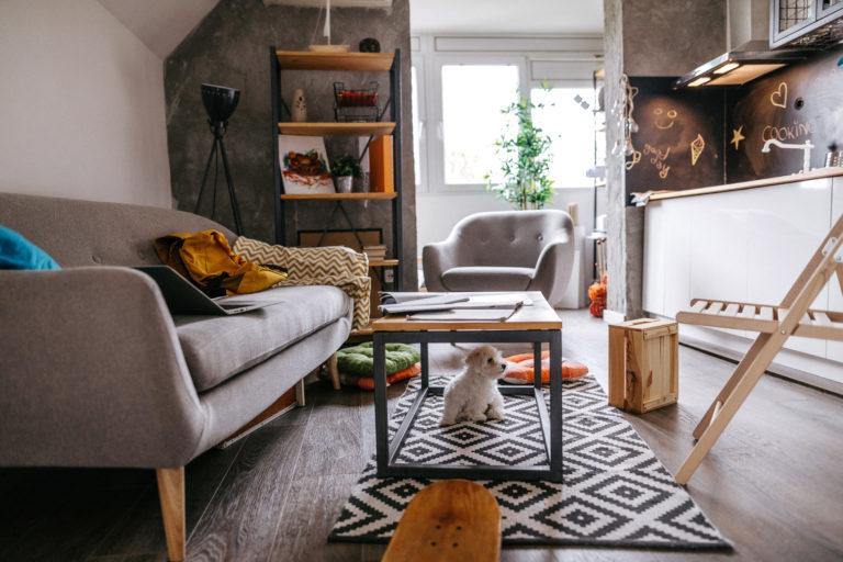 Kis méretű lakás berendezése – Így lesz tágas és hangulatos az otthonod