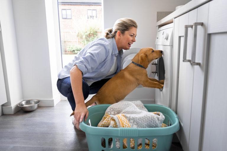 Kutyaszőr a mosógépben? Ezzel a 4 trükkel megszabadulhatsz tőle