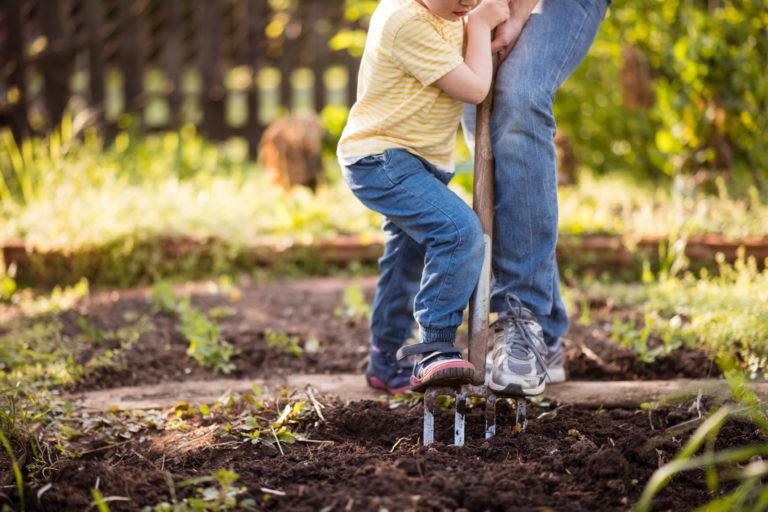 Kertrendezés tavasszal – Ezeket a munkálatokat ne halaszd későbbre!