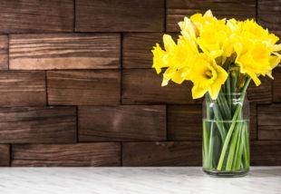 Virágba borult kertek II. – A nárcisz gondozása