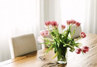 Virágba borult kertek I. – A tulipán gondozása