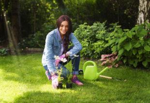 Irány a kert! – Egyszerű tippek a tavaszi teendőkhöz