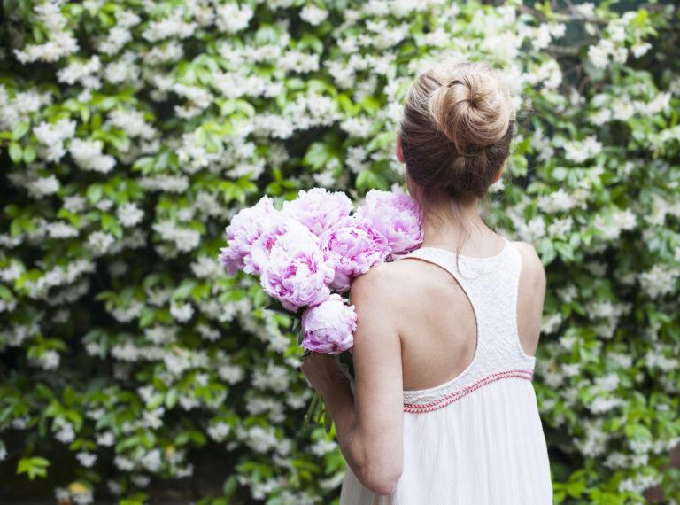 Virágba borult kertek VI – A pünkösdi rózsa gondozása