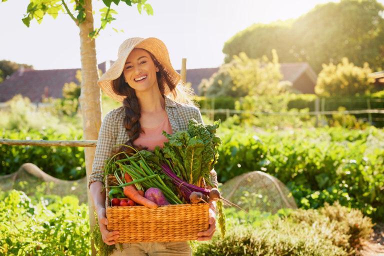 5 fontos tipp, amit mindenképpen fogadj meg zöldségeskert kialakítása előtt