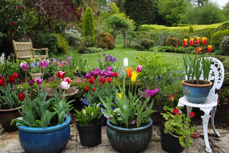 Tátva marad a szád – Hihetetlenül gyönyörű virágoskertek a világ minden pontjáról