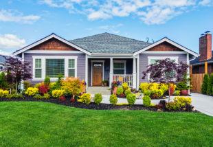 Fű gondozása nyáron – Tippek és tanácsok, hogy a hőségben ne csak a szomszéd füve legyen zöld