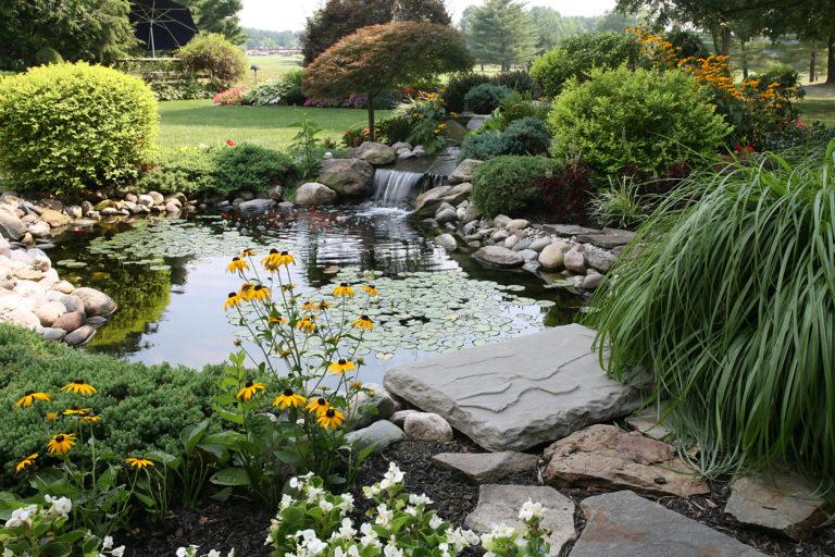 5 kerti tó probléma és megoldásaik – Ezekkel tippekkel garantáltan sikerül orvosolni a bajt