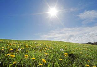 4 tipp, hogyan tartsd alacsonyan az áramszámlát nyáron a légkondi mellett