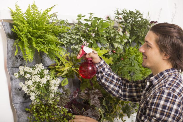 Függőleges kert házilag – Tippjeinknek hála a kicsi kert is lehet igazi oázis