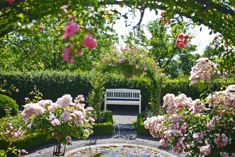 Ezzel a tippel tovább fognak virágozni kedvenc nyári virágaid