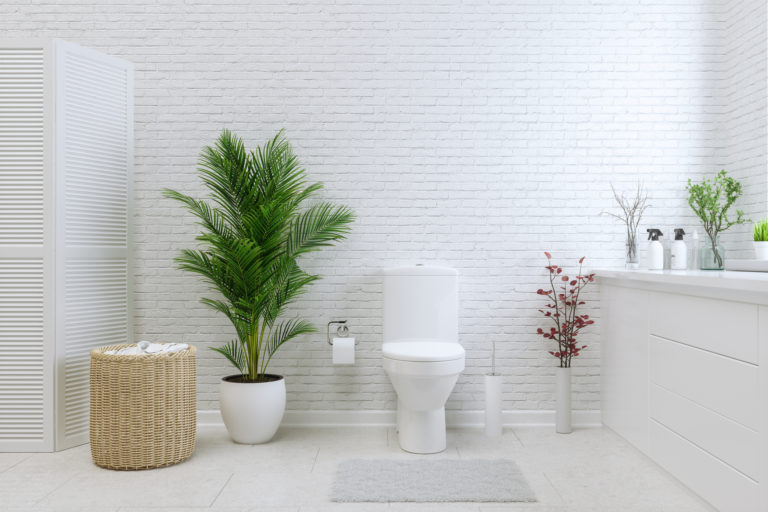 Így tisztítsd meg 10 másodperc alatt a WC kefét