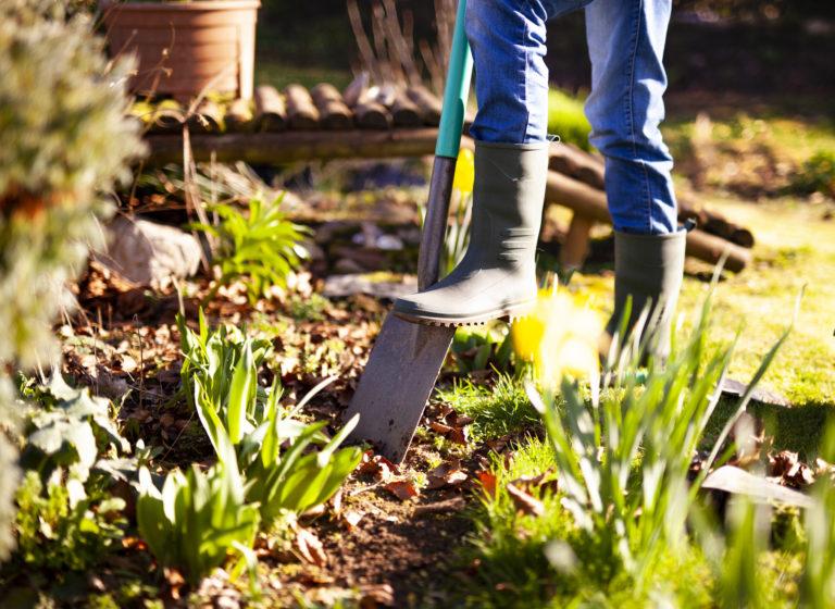 Így készítsd fel ősszel a kertet a téli fagyokra